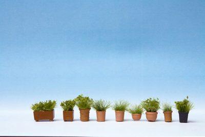 Grünpflanzen in Blumentöpfen <br/>NOCH 14032