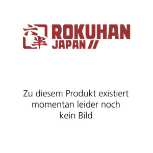 Rokuhan 7297084 <br/>Gleis, gerade, 440 mm, mit Bet