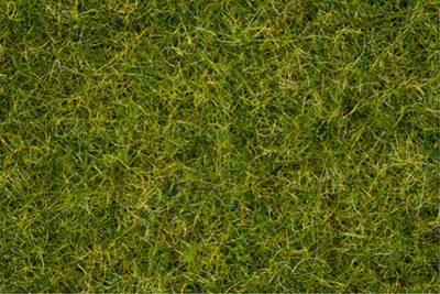 NOCH 07072 <br/>Master-Grasmischung Sommerwiese, 2,5 bis 6 mm