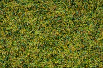 NOCH 07073 <br/>Master-Grasmischung Kuhweide, 2,5 bis 6 mm 1