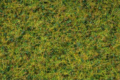 NOCH 07073 <br/>Master-Grasmischung Kuhweide, 2,5 bis 6 mm