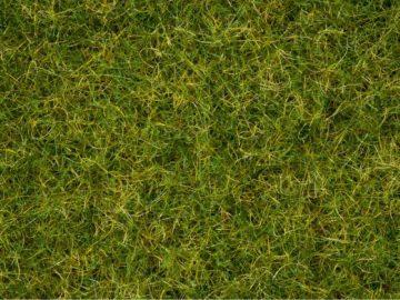 NOCH 07076 <br/>Master-Grasmischung Sommerwiese, 2,5 bis 6 mm 1
