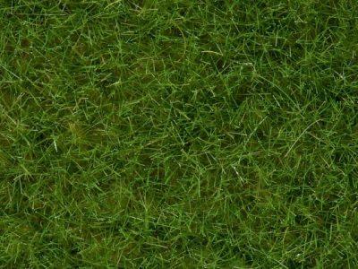 NOCH 07092 <br/>Wildgras, hellgrün, 6 mm