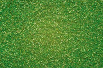 NOCH 08410 <br/>Streumaterial hellgrün 1