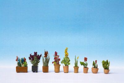 NOCH 14012 <br/>Zierpflanzen in Blumentöpfen