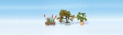 NOCH 14020 <br/>Zierpflanzen in Blumenkübeln