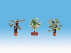 NOCH 14023 <br/>Mediterrane Pflanzen, H0