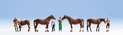 NOCH 15632 <br/>Pferdepflege