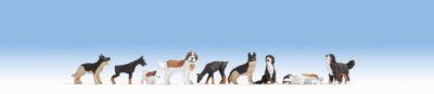 NOCH 15717 <br/>Hunde