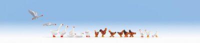 NOCH 15772 <br/>Hühner und Gänse