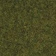 NOCH 50220 <br/>Streugras Wiese, 2,5 mm 1