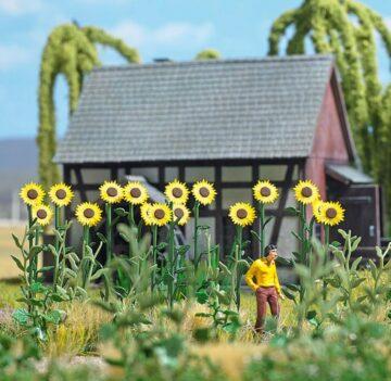 BUSCH 1261 <br/>Riesen-Sonnenblumen 1