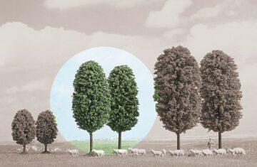 BUSCH 6053 <br/>Laubbäume, 2 Stück 1