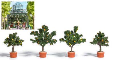 BUSCH 6619 <br/>Vier Zitrusbäume in Pflanzkübel