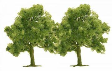 BUSCH 6627 <br/>Obstbäume, 2 Stück 1