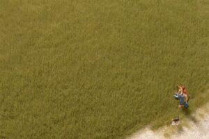 Auhagen 75614 <br/>Grasfasern oliv 4,5 mm