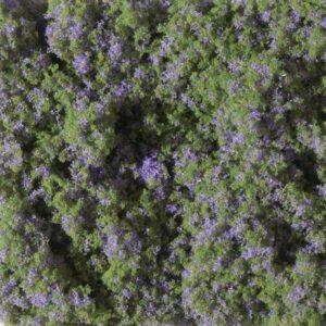 Auhagen 76931 <br/>Blumenmatte violett