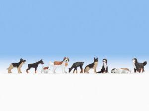 NOCH 12852 <br/>Hunde