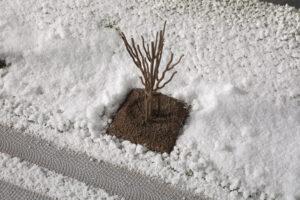 Auhagen 70951 <br/>Junge Bäume Winter